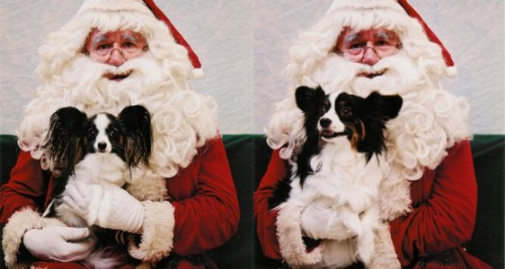 Maxxie With Santa