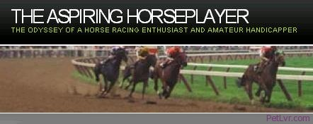 Horse Racing Enthusiast – Interviewed