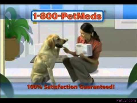 1800 PetMeds – Pet Health Alert – Flea & Ticks Population Explodes