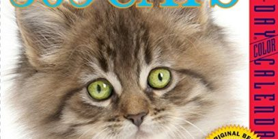 365-Cats-Color-Page-A-Day-Calendar-2016-0