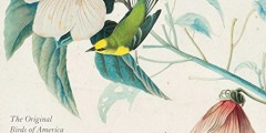 Audubon's Watercolors 2016 Wall Calendar: The Original Birds of America