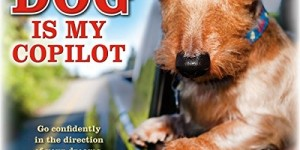 Dog is My Copilot 2016 Wall Calendar