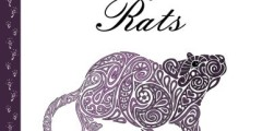 Doodle Artist – Fanciful Rats: A colouring book for grown ups