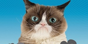 Grumpy Cat 2016 Wall Calendar