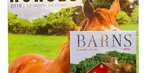 Horses 2016 12 Month Calendar with Bonus Miniature Barns Calendar