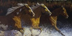Lang Horses In The Mist 2016 Wall Calendar by Persis Clayton Weirs/ Chris Cummings, January 2016 to December 2016, 13.375 x 24 Inches (1001917)