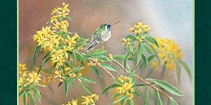 Lang Hummingbirds 2016 Wall Calendar by Susan Bourdet, January 2016 to December 2016, 13.375 x 24 Inches (1001918)