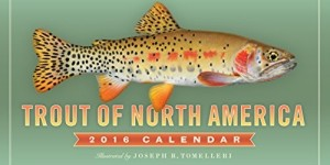 Trout of North America Wall Calendar 2016
