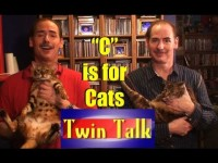 """""""C"""" is for Cats –Twin Talk #3"""