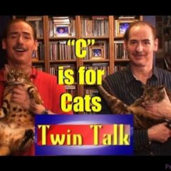"""C"" is for Cats –Twin Talk #3"