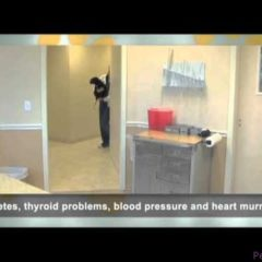 Country Ridge Pet Health Farmington Hills Michigan Pet Health Segment