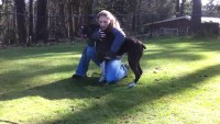 Dog Trainer Saves Dog with CPR