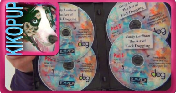 Dog Training DVDs- Dog Tricks