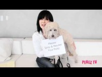 Dog Training Tip – Paws For A Minute™ with Inger – Spay & Neuter Your Pets!