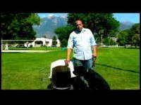 Dog Training Tips : Crate-Train an Adult Dog