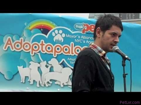 Dog Training Tips from Adoptapalooza (September 12, 2010)