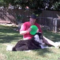 Dog Training Tips – Learning to play frisbee, or Disc Dog, with Maxx the border collie
