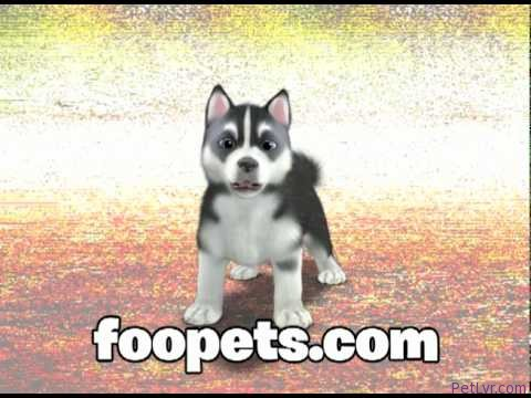 FooPets Commercial – April 2010