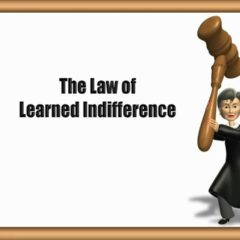 Free Dog Training Tips – Learned Indifference Video