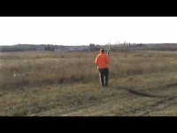 Free Hunting Dog Training Videos – Moving Tether