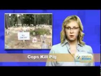Funny Pet News #6- Doggie Whores, Knut, Cat Predicts Death (With Link)