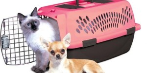 Petmate Pet Taxi Lulu Portable Kennel, Pink, 1ct