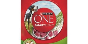 Purina ONE SmartBlend Dry Premium Dog Food, Lamb and Rice Formula, 31.1 lb Bag