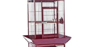 Prevue Select Wrought Iron Parrot Bird Cage 24x20x60″, Garnet Red