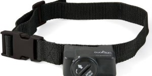 Guardian Wireless Fence Receiver Collar