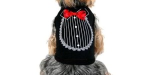 Black Red Satin Bow Tie Tuxedo Soft Cotton Tee For Dog – Small