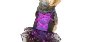 Purple Black Glitter Star Skirt Dress For Puppy Dog – Small