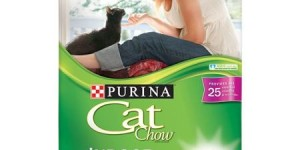 Purina Cat Chow Dry Cat Food, Indoor, 22 lb Bag