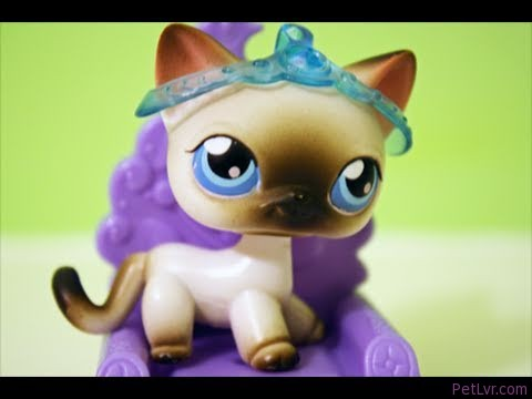 Littlest Pet Shop: The Queen (Part 1)