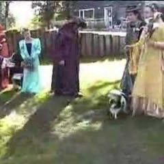 Maxxie at our Medieval Wedding