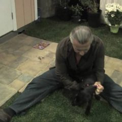 Mike Wombacher – Puppy Training Tips