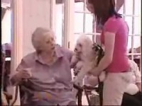 Moment by Moment: The Delta Society's Pet Partners