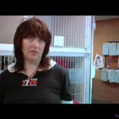 Much Love Animal Rescue – New