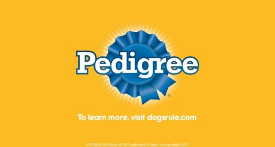 PEDIGREE® Nutrition Video: Puppy