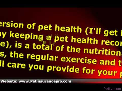 Pet Health Record Forms