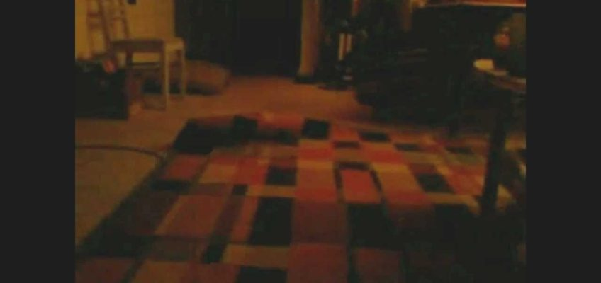 ★SURPRISE KITTY VIDEO★ADORABLE CAT HIDES UNDERNEATH THE CARPET★OK CAT VIDEO FOR CHILDREN