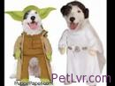 The Funniest Dog Costumes for Halloween – Your Pet News