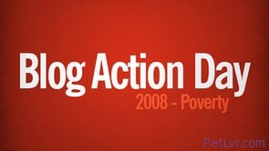 Today October 15, 2008 is Blog Action Day 2008