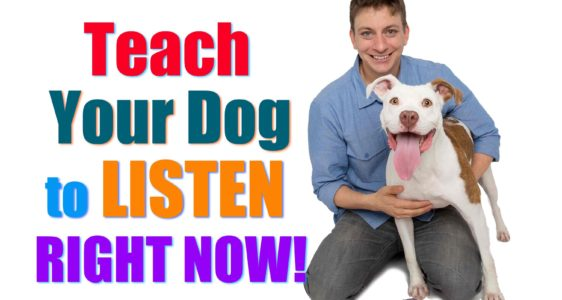 "How to Teach Your Puppy to ACTUALLY Listen to You When it Counts! (Real Life ""Leave It"" Explained!)"