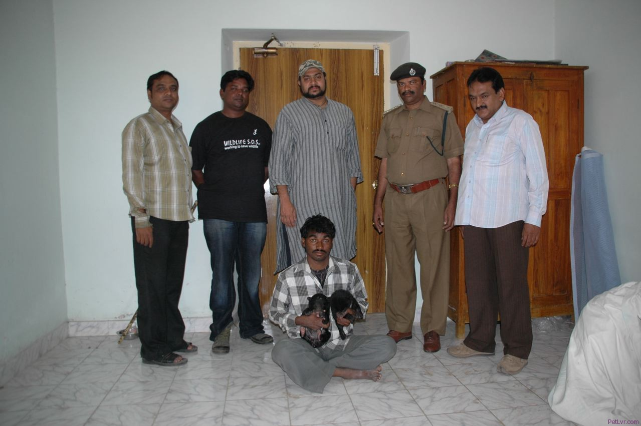andhra-pradesh-forest-department-officials-and-wildlife-sos-team-members-with-arrested-poacher-and-bear-cubs.jpg