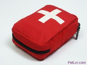 Don't Forget a Pet First Aid Kit for the Home and Car!