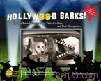 Cover_Hollywood